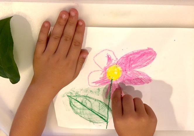 leaf-rubbing-ls-flower