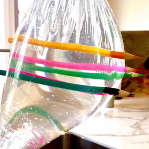 Pencils through a bag science experiment