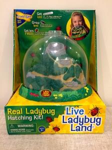 Live Ladybug Land Kids Gift Guide